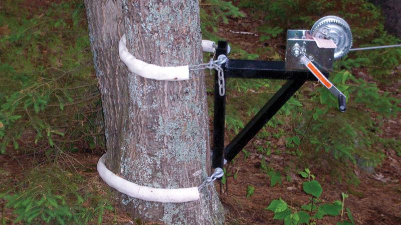 tree-winch